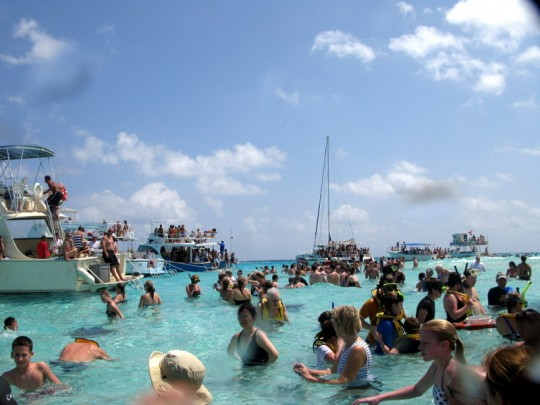 Stingray City Crowd