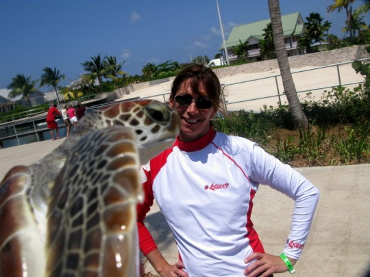 Cayman Island Turtle Farm Kiss